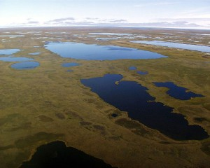 Aerial view of Arctic Coastal Plain near Barrow, AK