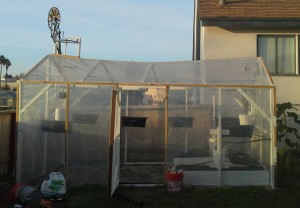 Musical Greenhouse, near completion
