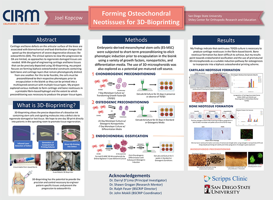 Forming Osteochondral Neotissues for 3D-Bioprinting